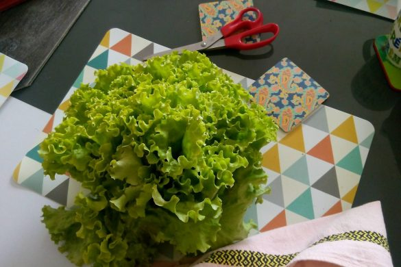 Salade AMAP