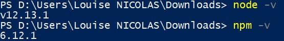 Version NodeJs et Npm pour Udemy