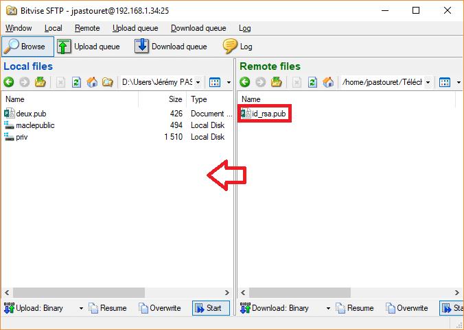 Bitvise - Transfert de clé SSH