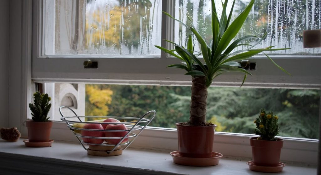 Les meubles impactent la qualité de l'air