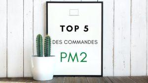 PM2 – Top 5 des commandes les plus pratiques : monitoring, scalabilité, start/stop