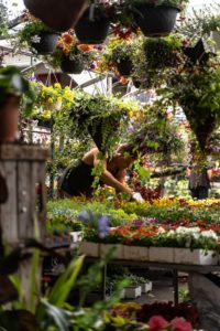 Professionnels du jardin